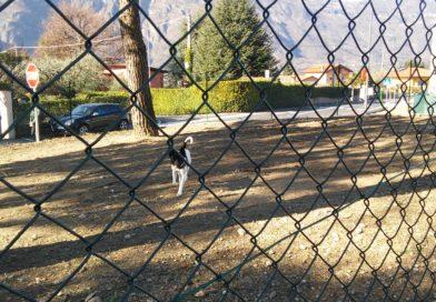 A Mandello riqualificata l'area cani di via Giulio Cesare